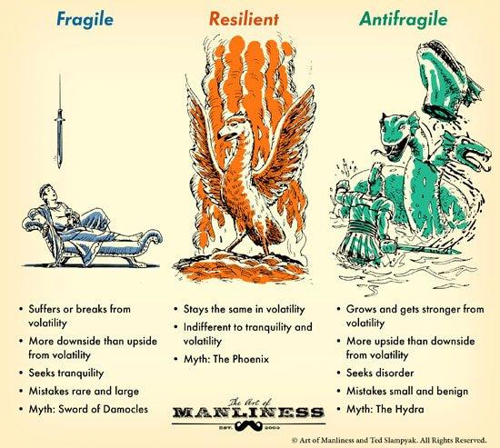 antifragile-3